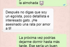 chat-whatsapp-novios-081