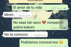 chat-whatsapp-novios-049
